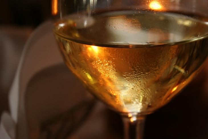 Editors drink Wine too!