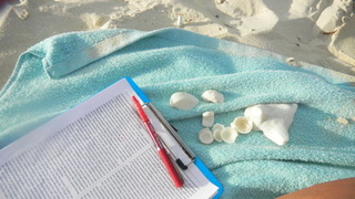 Photo of proof pages on a clipboard with a red pen for marking. Both items on a turquoise beach towel, along with small seashells. White sand in background.